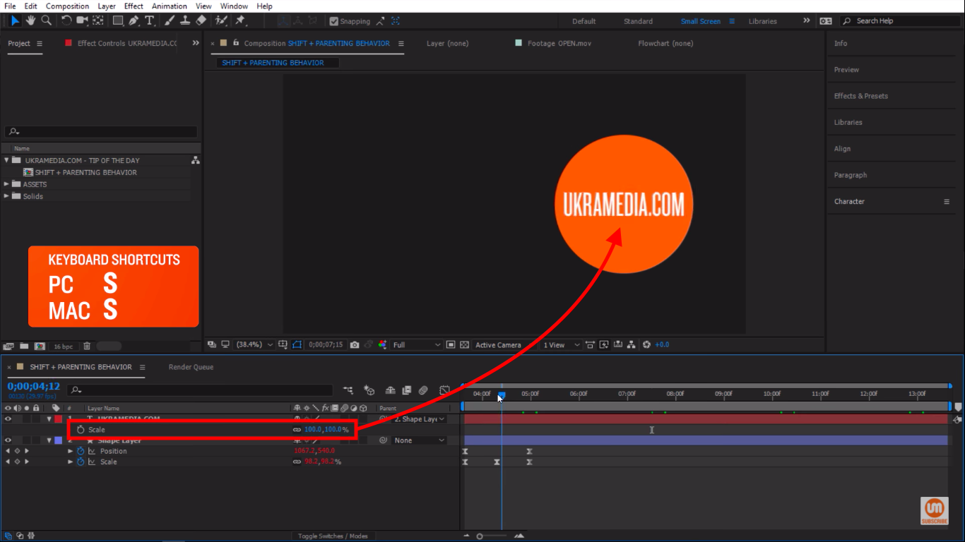 Scale Property in After Effects