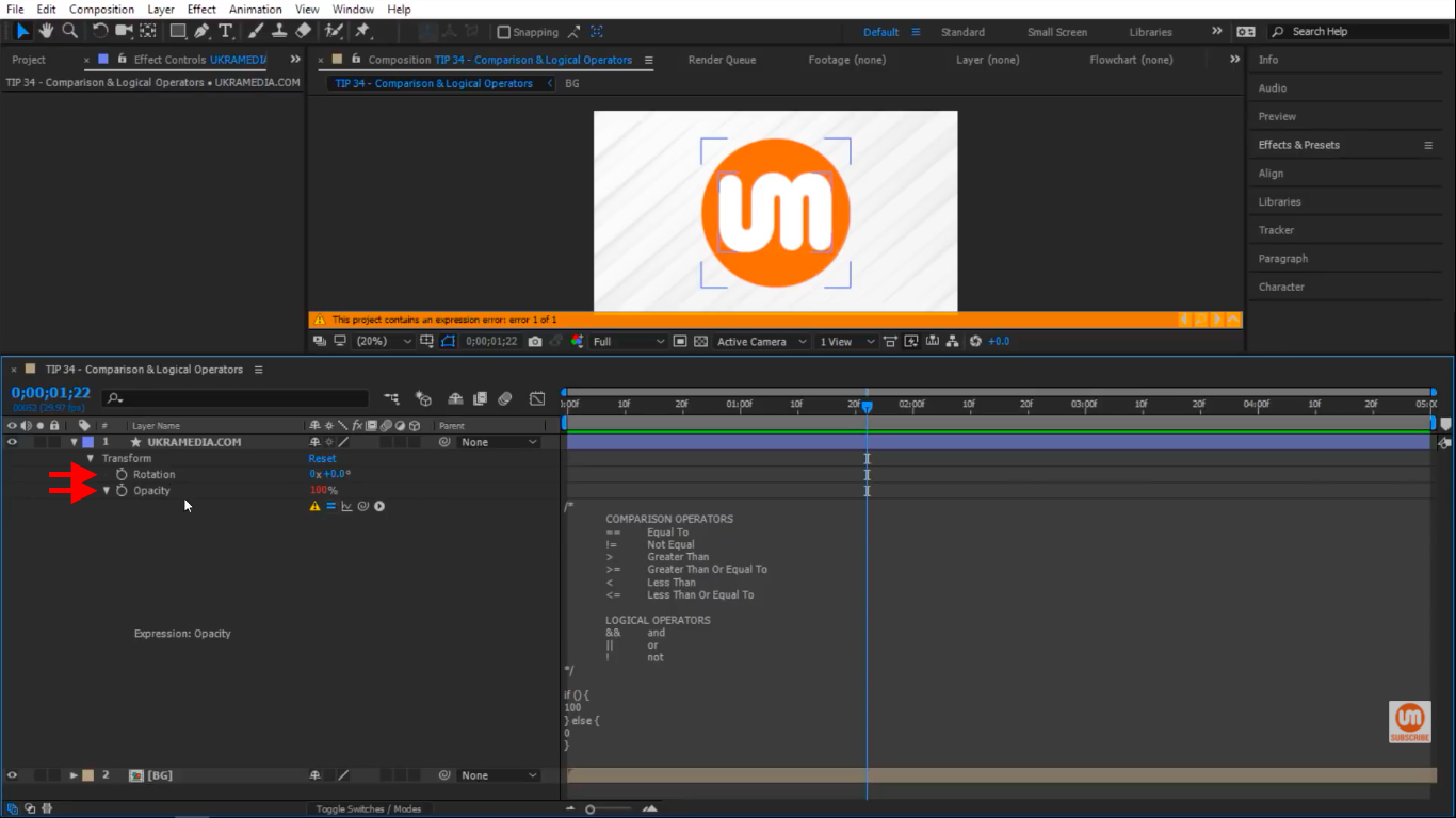 Opacity and Rotation Soloed in After Effect