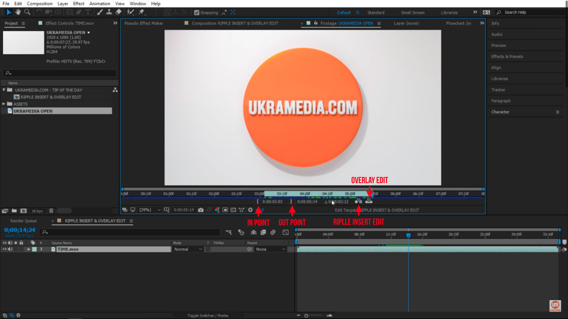 Options inside footage in After Effects